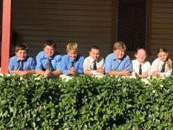 Students along hedge