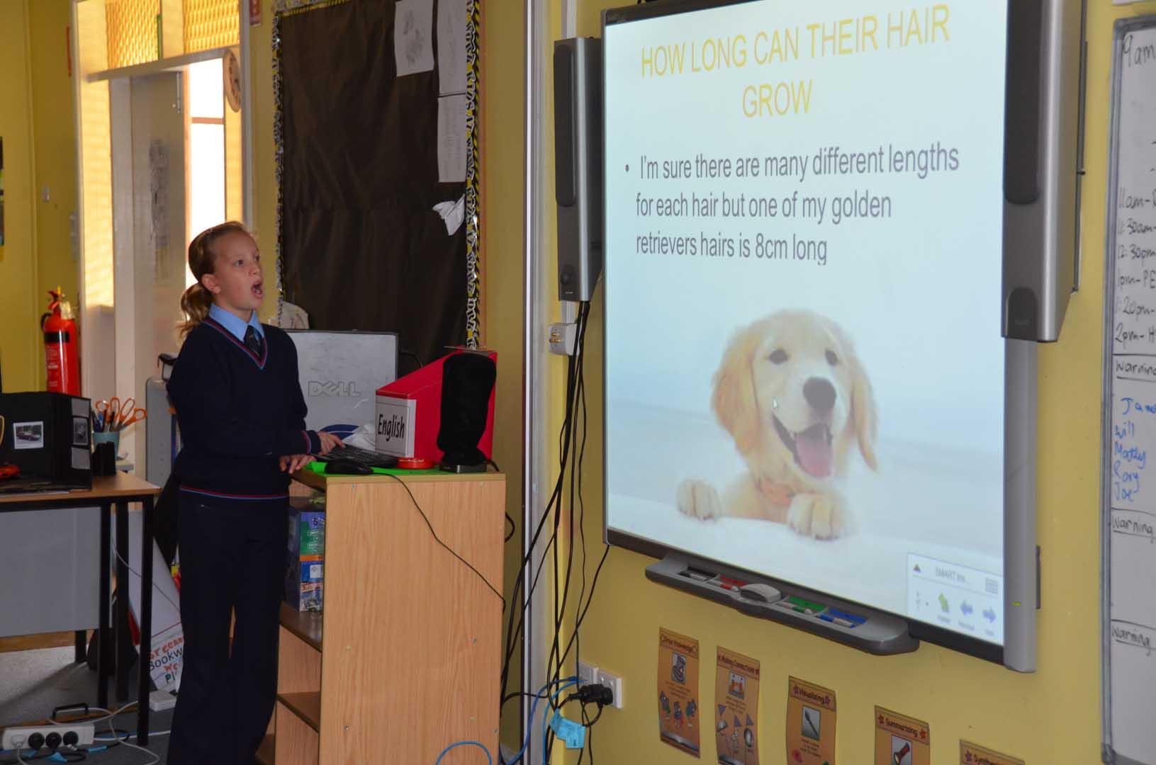 St-Patricks-walcha-presentation